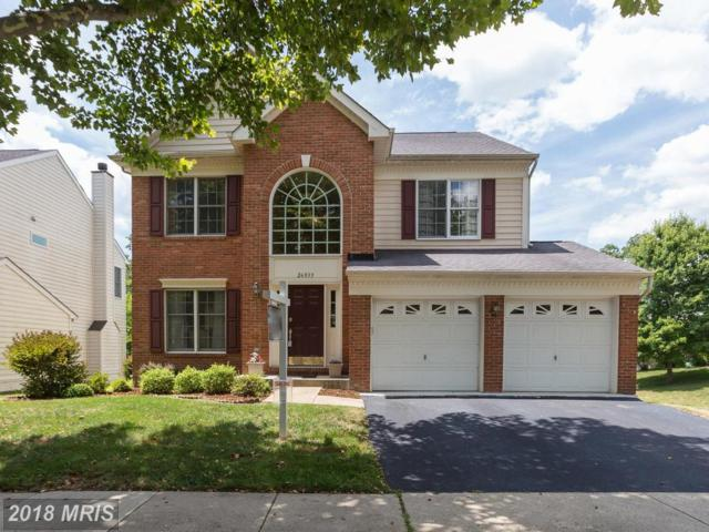 26033 Springdale Drive, Chantilly, VA 20152 (#LO10308366) :: The Greg Wells Team