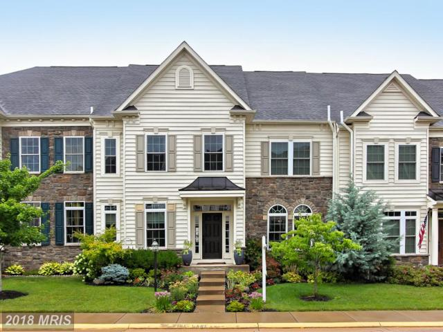 25082 Malmsbury Terrace, Chantilly, VA 20152 (#LO10308694) :: Bob Lucido Team of Keller Williams Integrity