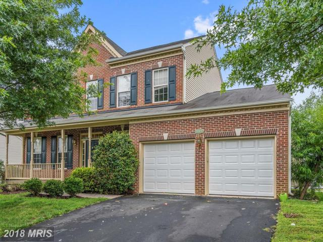 17473 Tedler Circle, Round Hill, VA 20141 (#LO10311467) :: SURE Sales Group