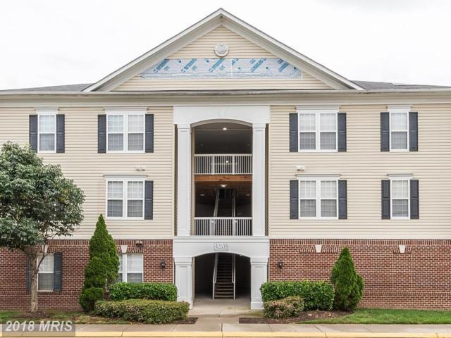 42539 Mayflower Terrace #203, Ashburn, VA 20148 (#LO10312964) :: Pearson Smith Realty