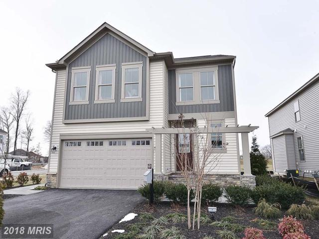 42518 Oxford Forest Circle, Chantilly, VA 20152 (#LO10318968) :: The Vashist Group