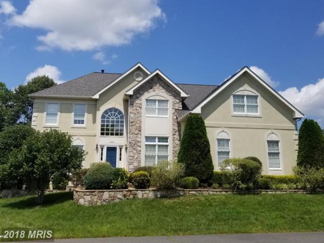 43689 Kenmore Lane, Chantilly, VA 20152 (#LO10319348) :: Colgan Real Estate