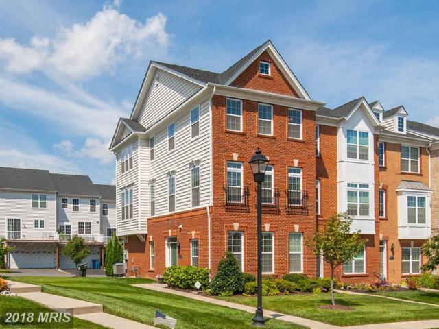 43200 Whelplehill Terrace, Ashburn, VA 20148 (#LO10320057) :: Bob Lucido Team of Keller Williams Integrity