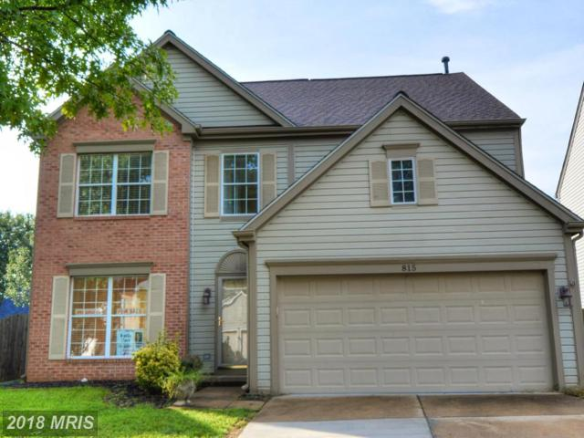 815 Catoctin Circle NE, Leesburg, VA 20176 (#LO10321325) :: Labrador Real Estate Team