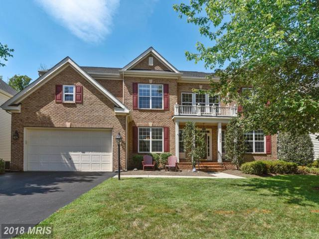 24793 High Plateau Court, Aldie, VA 20105 (#LO10321977) :: The Greg Wells Team