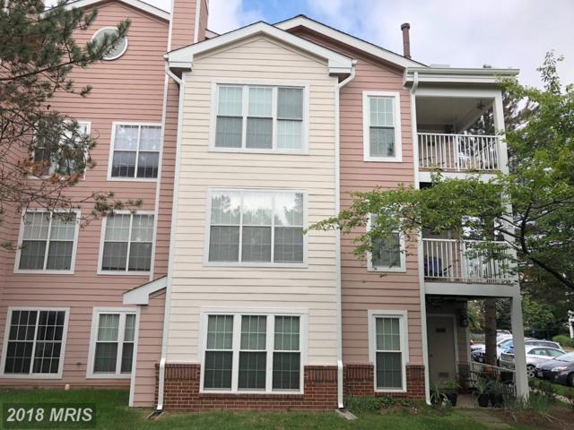 20979 Timber Ridge Terrace #301, Ashburn, VA 20147 (#LO10322375) :: RE/MAX Executives