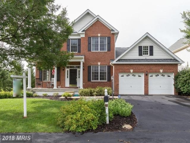 43075 Holly Tree Lane, Chantilly, VA 20152 (#LO10322797) :: RE/MAX Executives