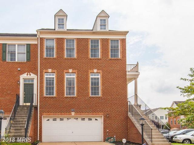 43717 Banshee Heights Terrace, Ashburn, VA 20148 (#LO10322993) :: The Greg Wells Team