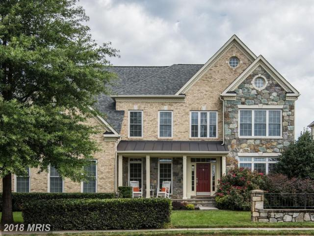 43046 Downfield Street, Chantilly, VA 20152 (#LO10323480) :: RE/MAX Executives