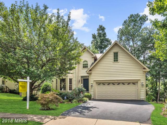 20639 Cutwater Place, Sterling, VA 20165 (#LO10323619) :: The Belt Team