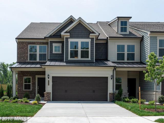 44525 Fiery Skipper Terrace #0, Ashburn, VA 20147 (#LO10323815) :: The Maryland Group of Long & Foster