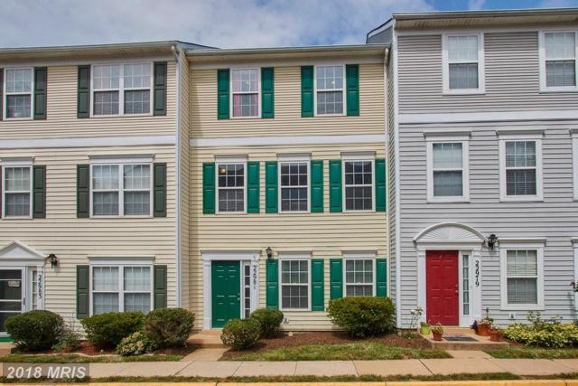 22981 Fleet Terrace, Sterling, VA 20166 (#LO10324396) :: Great Falls Great Homes