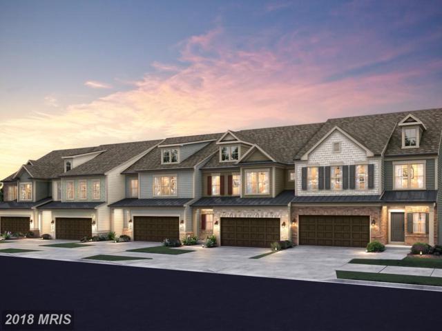 44533 Fiery Skipper Terrace, Ashburn, VA 20147 (#LO10325507) :: Arlington Realty, Inc.