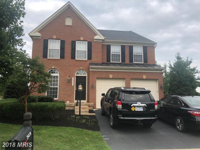 25467 Bright Court, Aldie, VA 20105 (#LO10326146) :: Arlington Realty, Inc.