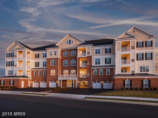 21025 Rocky Knoll Square #201, Ashburn, VA 20147 (#LO10327391) :: The Greg Wells Team