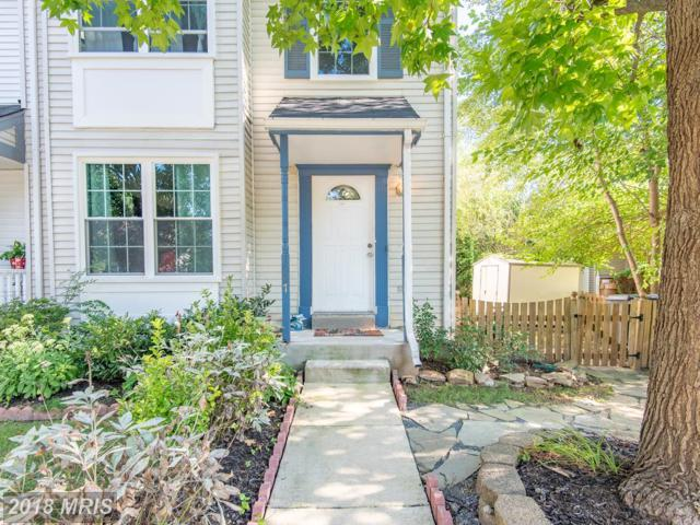 1007 Nelson Court NE, Leesburg, VA 20176 (#LO10330806) :: Labrador Real Estate Team