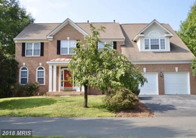 43560 Fieldsman Lane, Chantilly, VA 20152 (#LO10330947) :: Colgan Real Estate