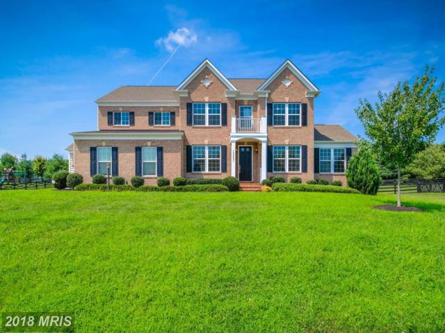 15651 Limestone Branch Place, Leesburg, VA 20176 (#LO10331728) :: Eric Stewart Group