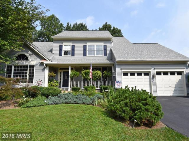 46468 Montgomery Place, Sterling, VA 20165 (#LO10333076) :: The Greg Wells Team