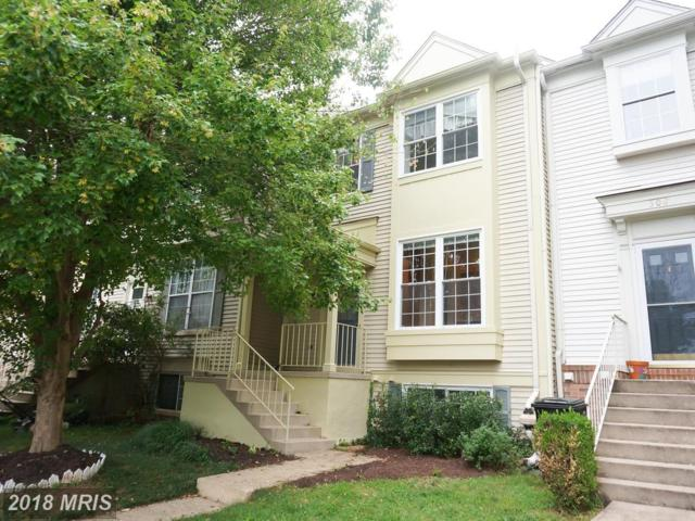 510 Ginger Square NE, Leesburg, VA 20176 (#LO10333598) :: Labrador Real Estate Team