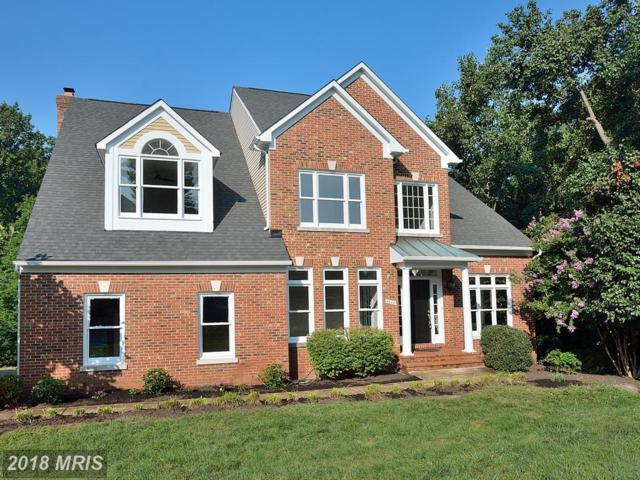 46441 Montgomery Place, Sterling, VA 20165 (#LO10333941) :: The Greg Wells Team