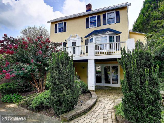 306-A Marshall Street, Middleburg, VA 20117 (#LO10334027) :: Keller Williams Pat Hiban Real Estate Group