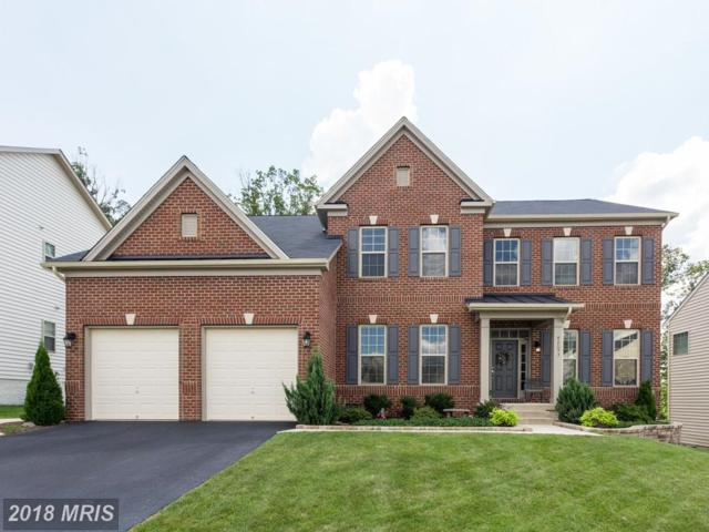 42093 Oak Crest Circle, Aldie, VA 20105 (#LO10339111) :: Circadian Realty Group