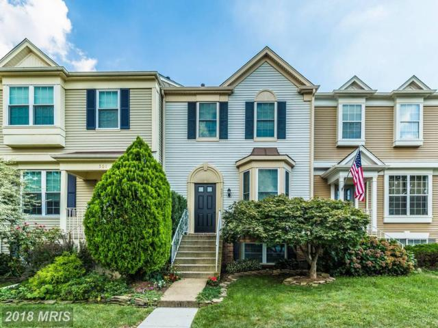 503 Jared Square NE, Leesburg, VA 20176 (#LO10339178) :: Labrador Real Estate Team