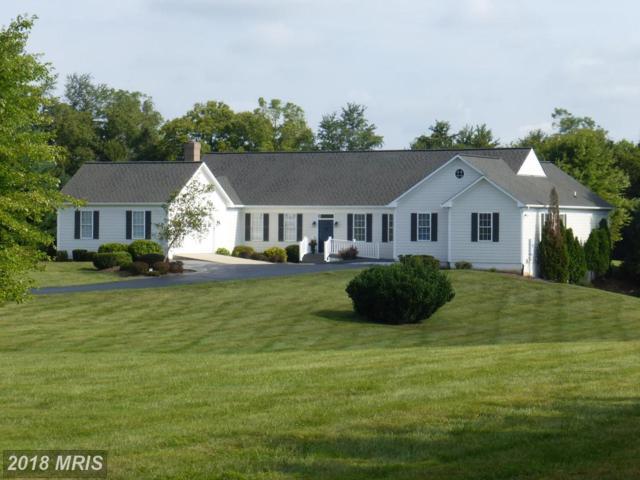 38556 Millstone Drive, Purcellville, VA 20132 (#LO10339671) :: Pearson Smith Realty