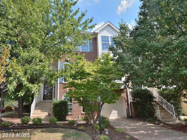 46677 Ashmere Square, Sterling, VA 20165 (#LO10341205) :: Keller Williams Pat Hiban Real Estate Group