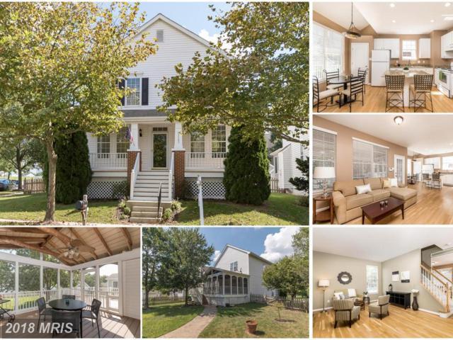 43385 Chorley Wood Street, Chantilly, VA 20152 (#LO10341379) :: Colgan Real Estate