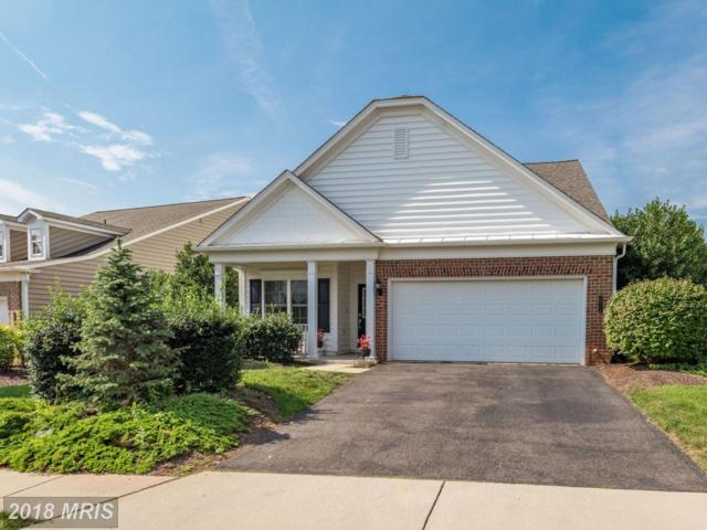 20714 Golden Ridge Drive, Ashburn, VA 20147 (#LO10341710) :: The Greg Wells Team