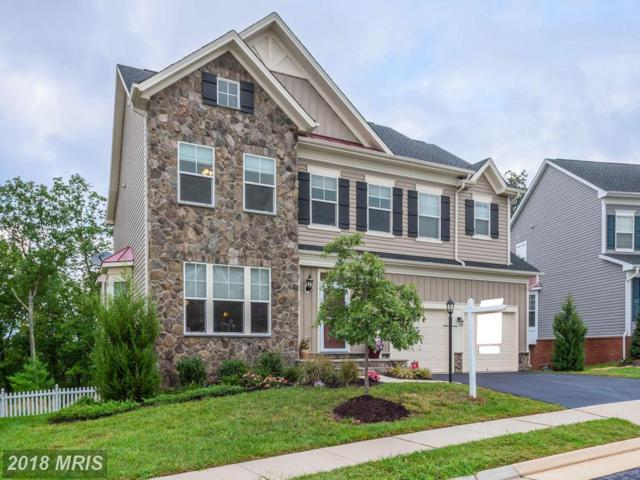 21078 Potomac Trail Circle, Ashburn, VA 20148 (#LO10343640) :: The Belt Team
