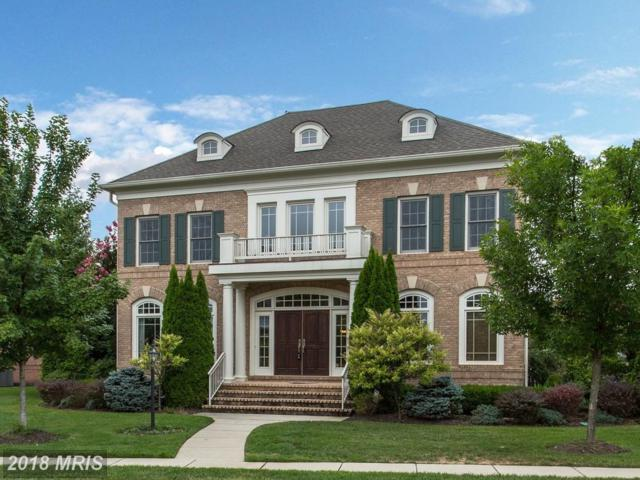 22970 Lois Lane, Ashburn, VA 20148 (#LO10344308) :: Network Realty Group
