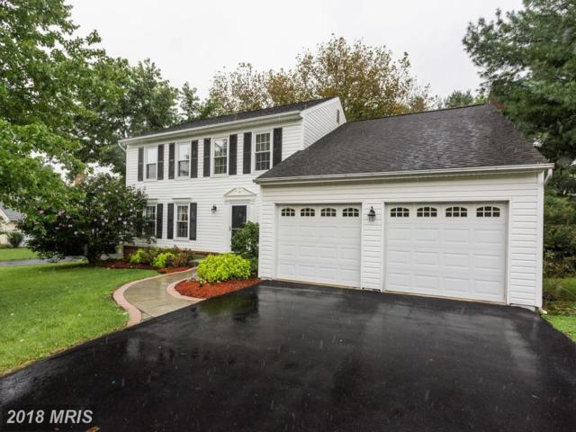 20043 Great Falls Forest Drive, Great Falls, VA 22066 (#LO10344838) :: The Belt Team