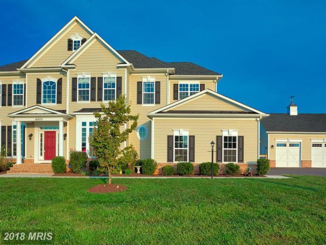 18600 Humphery Lane, Purcellville, VA 20132 (#LO10345560) :: Eric Stewart Group
