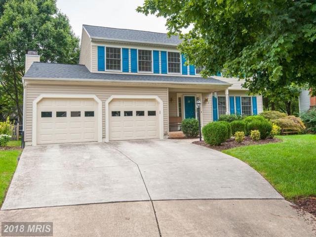 20663 Ashleaf Court, Sterling, VA 20165 (#LO10346754) :: Keller Williams Pat Hiban Real Estate Group