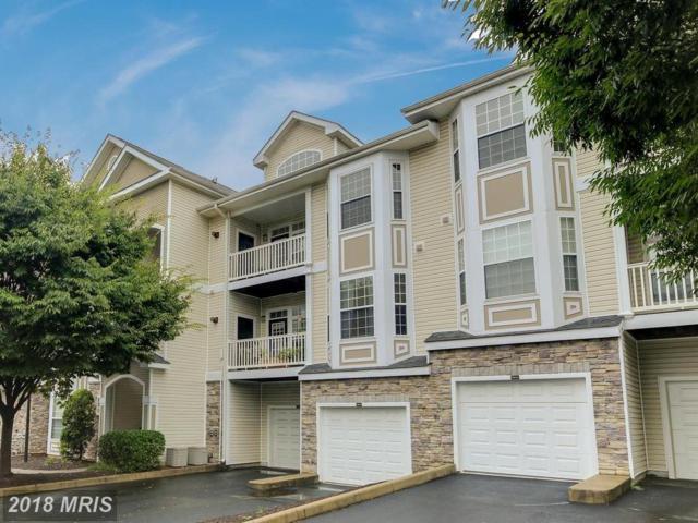 510 Sunset View Terrace SE #302, Leesburg, VA 20175 (#LO10346844) :: The Greg Wells Team