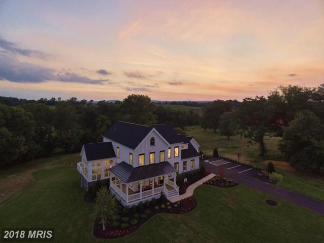 Courtney Meadow Place, Leesburg, VA 20176 (#LO10347305) :: RE/MAX Executives