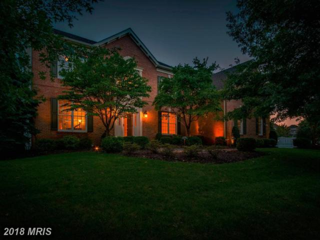 19917 Interlachen Circle, Ashburn, VA 20147 (#LO10347439) :: The Belt Team