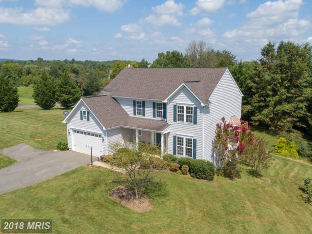 12020 Morningstar Place, Lovettsville, VA 20180 (#LO10349373) :: RE/MAX Executives