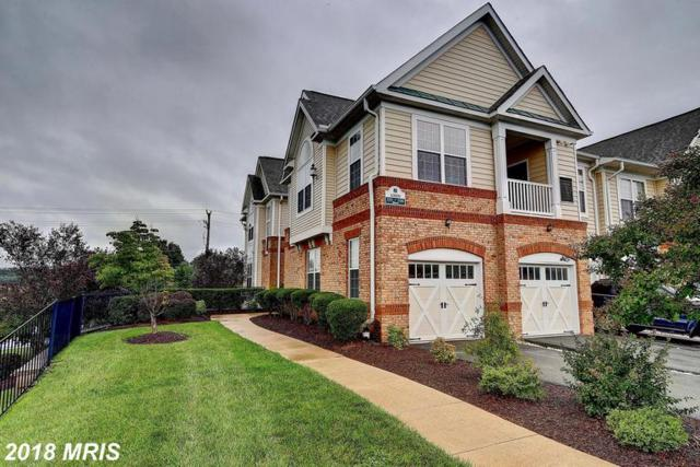 43890 Hickory Corner Terrace #104, Ashburn, VA 20147 (#LO10349584) :: Circadian Realty Group