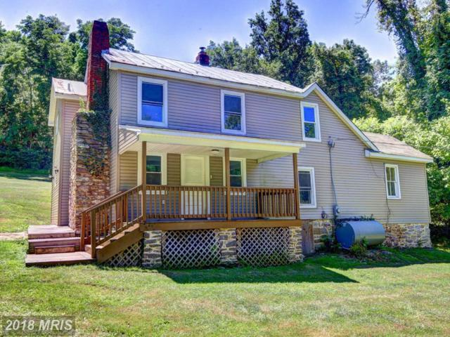 37291 Branchriver Road, Purcellville, VA 20132 (#LO10349648) :: RE/MAX Executives