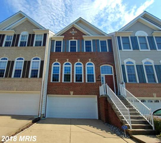 20645 Glenmere Square, Sterling, VA 20165 (#LO10351783) :: The Putnam Group