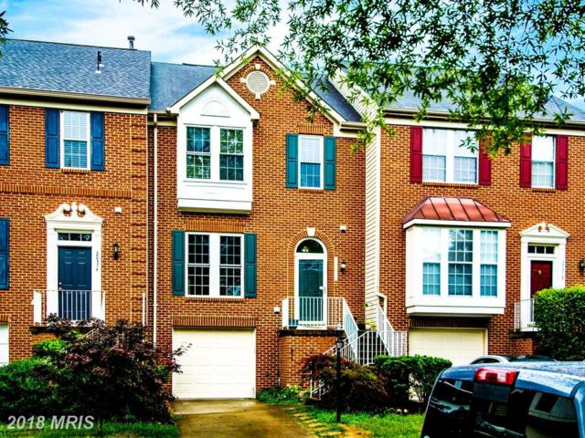20376 Briarcliff Terrace, Sterling, VA 20165 (#LO10351837) :: Browning Homes Group