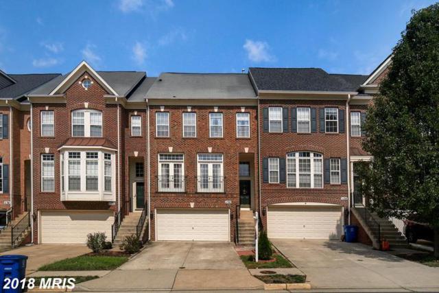 1130 Keokuk Terrace NE, Leesburg, VA 20176 (#LO10352122) :: Browning Homes Group