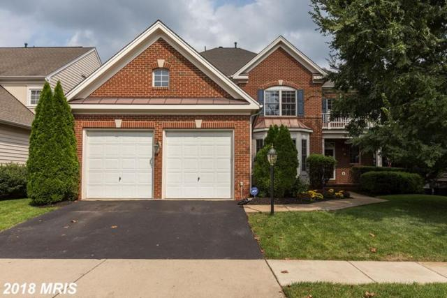 43665 Riverpoint Drive, Leesburg, VA 20176 (#LO10352757) :: Network Realty Group