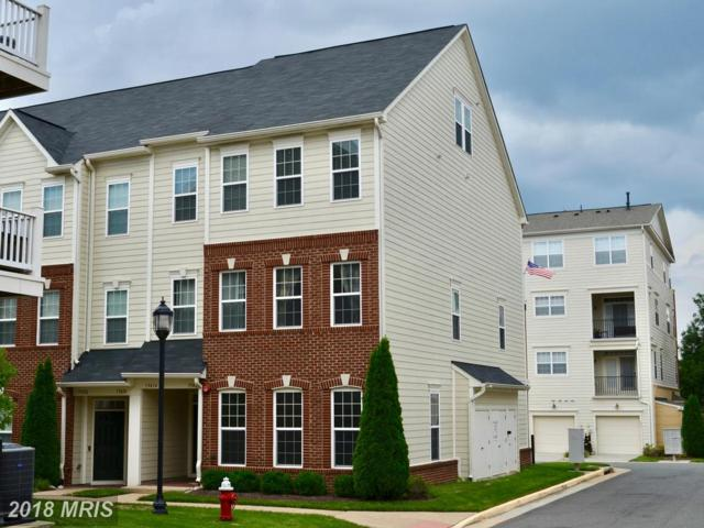 19416 Newton Pass Square, Leesburg, VA 20176 (#LO10353030) :: RE/MAX Executives
