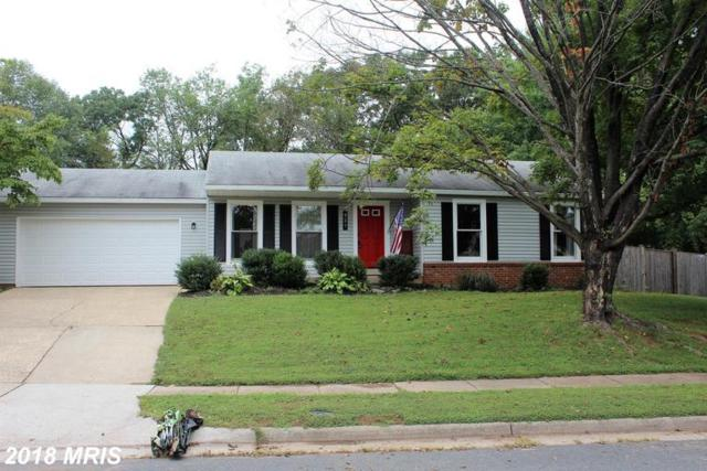 227 N. Cameron Court, Sterling, VA 20164 (#LO10353102) :: Pearson Smith Realty