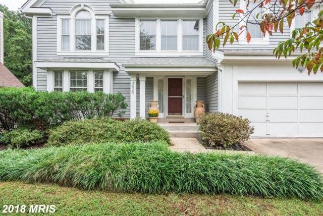 20282 Ordinary Place, Ashburn, VA 20147 (#LO10353220) :: Pearson Smith Realty